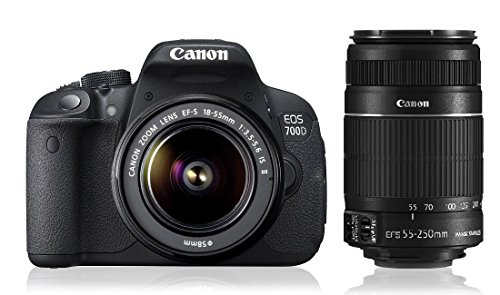 Canon EOS 700D 18MP Digital SLR Camera (Black) with 18-55mm and 55-250mm IS II Lens, 8GB card and Carry Bag
