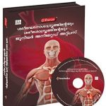 Junior Animated Atlas of Human Anatomy and Physiology (Malayalam)